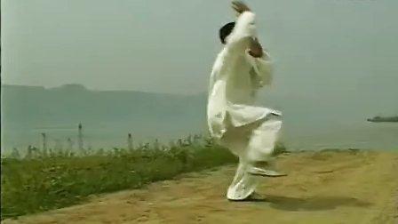 赵堡太极之忽雷太极拳(张随胜)