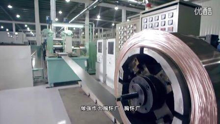 浙江双飞无油轴承股份有限公司MV