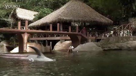 国外电影精彩片段章鲨BD中英双字_clip