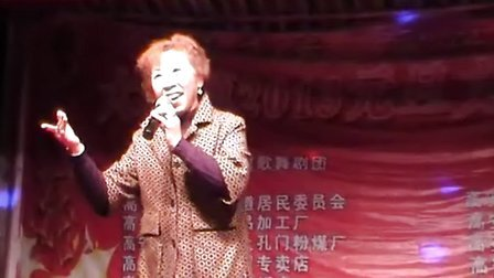 江西省高安市大城镇2013年元旦文艺晚会(第一场)