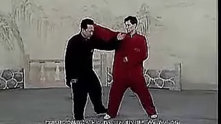 李俊义八极拳六大开之05顶劲