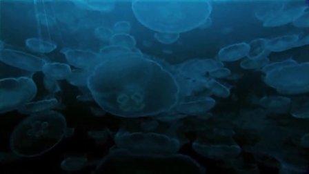 BBC 深蓝(Deep Blue)[BD-720P]