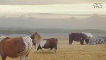 小矮马创意广告
