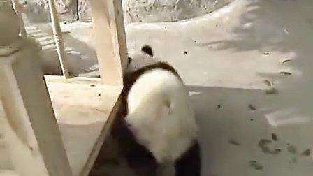 好好玩的滑溜梯