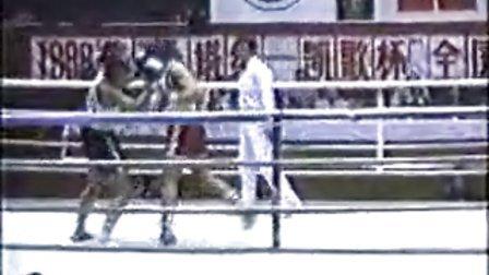 拳击 冠军赛