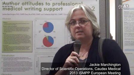 学术论文作者对职业写作服务的看法