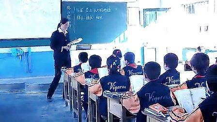 《爬山虎的脚》课堂教学实录全国各省最新优质课观摩课