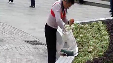 郑州公园老头跳苹果舞,逆天舞蹈!^-^