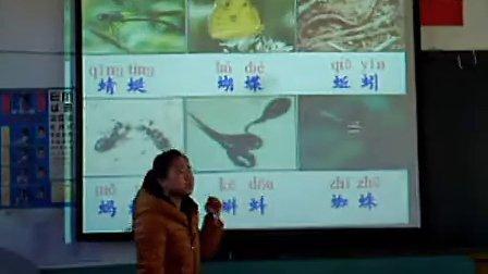 一年级语文识字教学示范课小学语文优质课观摩课展示课