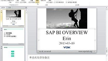 yok-flex-yang-如何成为一名SAP顾问
