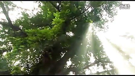 山东峄城城市宣传片
