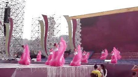 【苍溪热线网】2013中国苍溪第十一届梨花节现场视频