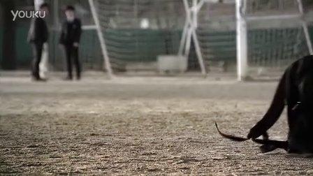 韩国反校园暴力公益广告-轩鱼网