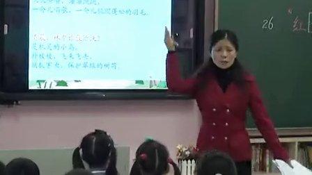 小学二年级语文优质课展示《红领巾真好》人教版雷老师