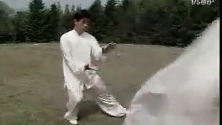 太極拳典型動作用法