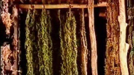 吐鲁番葡萄干的制作方法