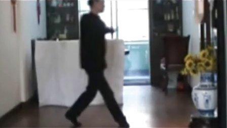 广场舞教程--梦里梅开