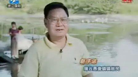 《《风雅钱塘》之壶镇古风.-320x240