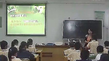 """""""精彩极了""""和""""糟糕透了""""王春妮第一届深圳小学语文教学大赛"""