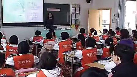 《清平乐村居》人教版小学语文五年级下册