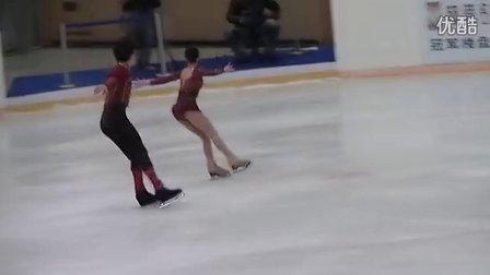 2013年全国花样滑冰冠军赛