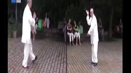 水浪拳-杨乃发先生演练
