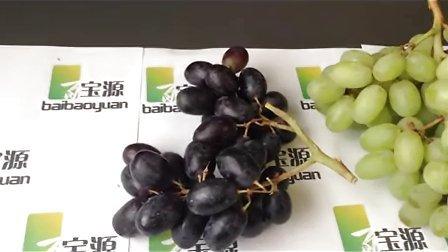 百宝源 青提子 黑提子 黑加仑 新鲜葡萄水果