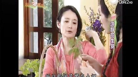20130408《現代心素派》涼拌花生芽、花生芽炒蘆筍 (董淑芬)