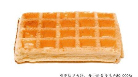 VANDERPOL荷兰华夫饼产品介绍