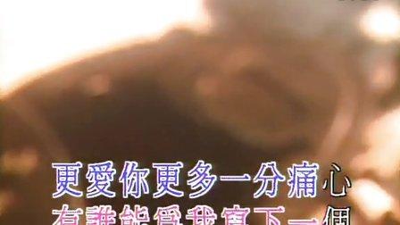 08.刘德华 - 缘尽.dvd.ktv.x264.2ac3.