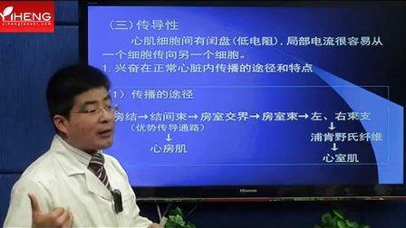 颐恒2013 心血管系统(上)-生理(4) qq2227302908