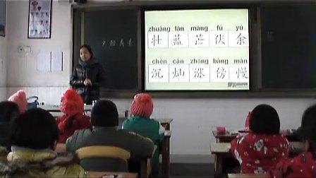小学语文二年级上册《夕阳真美》童秀玲老师