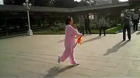 陈式太极刀背面演示-秦兰玲