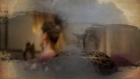 央视9套大型纪录片《长白山》35秒片头