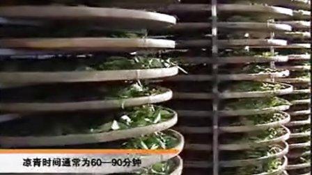 漳平水仙茶加工工艺