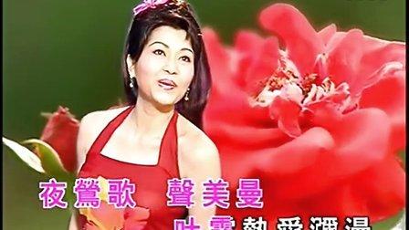 情花开-胡美仪