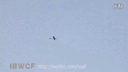 IBWCF-《逆风鹰飞扬》