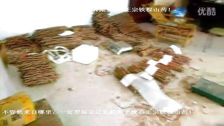 河南焦作怀府农庄铁棍山药批发包装整过程 沙土垆土山药