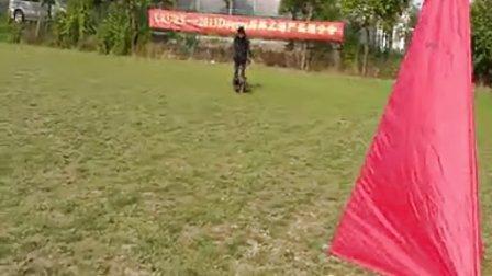 阿卡在上海dogtra 交流会