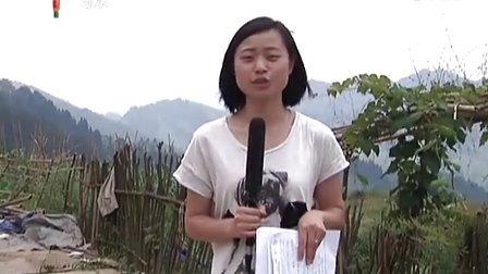 2013年5月30日习水新闻联播