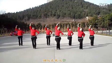 叶子广场舞 又见山里红(附背面演示分解)(清晰)