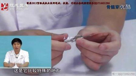 2013贺银成执业医师技能视频-骨髓穿刺术