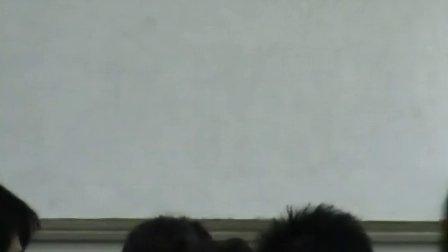 44中何琴《文艺复兴》课堂录像
