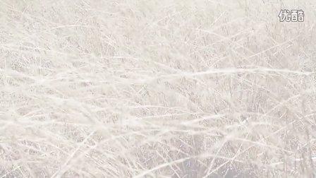 ELLEMEN 睿士 澳洲大片拍摄花絮澳大利亚