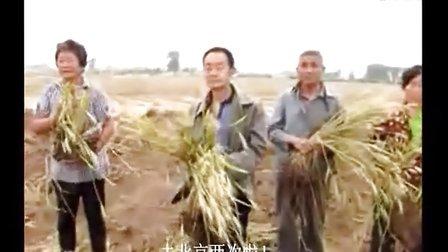 【字幕版】河北曲周300余亩农田被毁 村民跪地痛哭!