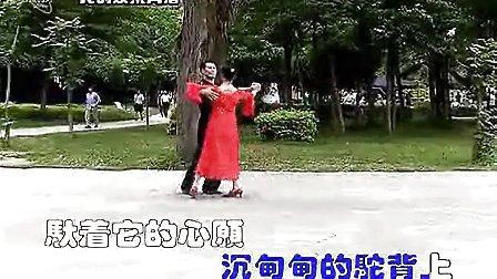慢四步舞天边的骆驼 广西北海吉村 凤子视频(流畅)