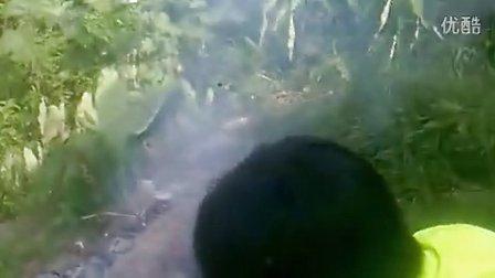 环江香猪宰杀。。。