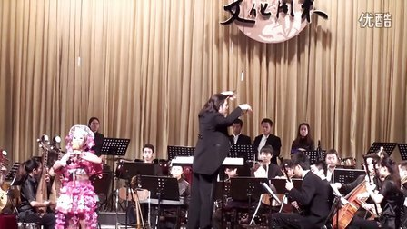 葫芦丝与乐队《梨花雨》