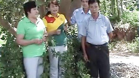 平果海城嘹歌(关于李运三)