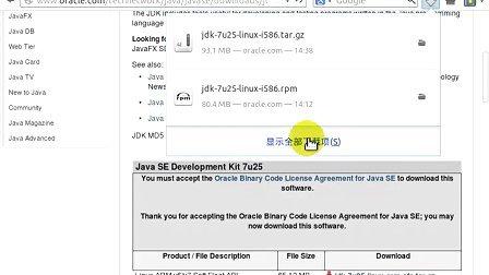 Linux Deepin  32Bit 安装Sun-JDK视频